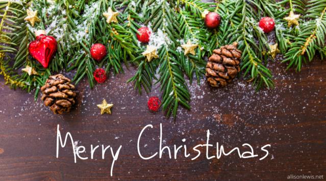 Merry Christmas - pic for blog